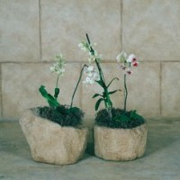 Weathered Hewn Planter