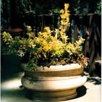 Glocestershire Planter