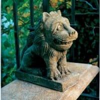 Rushcliffe Lion